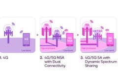 Dynamic Spectrum Sharing (DSS)